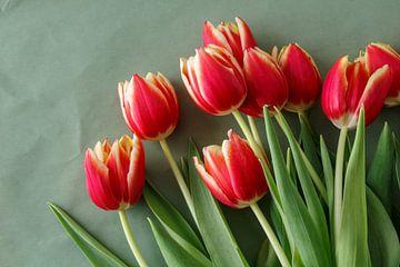 Rode tulpen van Ester Dammers