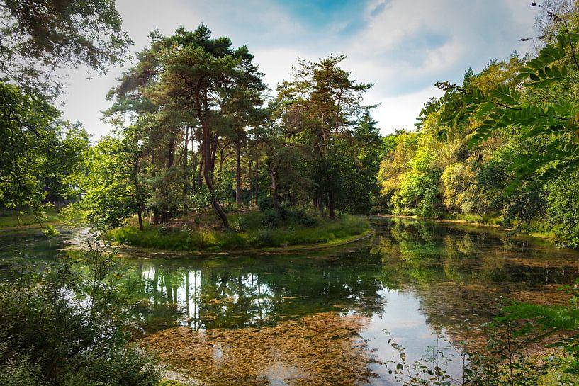 Eiland op Heidestein van Jan van der Knaap