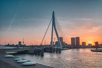 De zwaan van Rotterdam van Tim Vrijlandt