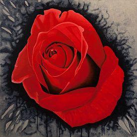 spetterende rode roos van Ria van Meijeren