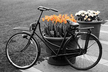 Fiets tegen bloembakken met tulpen in Amsterdam van Evelien Oerlemans