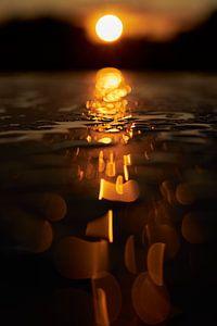 Gouden regendruppels van Gert Mostmans