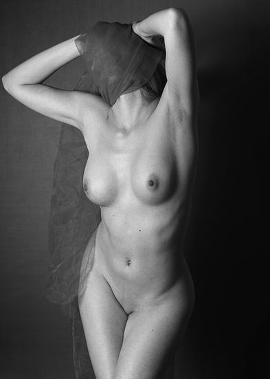 Art Nude Photography  van Falko Follert