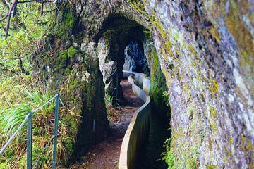Levada do Furado, Madeira von Michel van Kooten