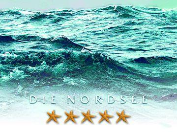 Die Nordsee – 5 Sterne von Dirk H. Wendt