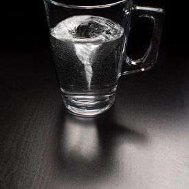 Storm in een glas water van Elianne van Turennout