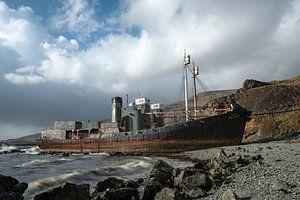 La chute de la baleine islandaise sur