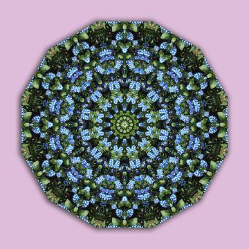 Forget me nots,  Flower Mandala van Barbara Hilmer-Schroeer