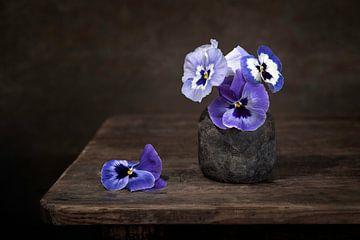 Stillleben mit Veilchen von Silvia Thiel