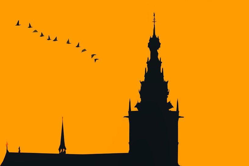 Nijmegen in avond oranje, met vlucht ganzen van Maerten Prins