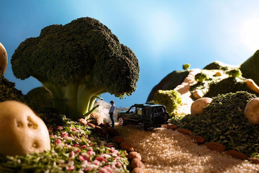 Voedsellandschap met broccoli
