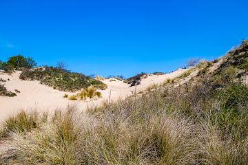 Hollandse duinen van Consala van  der Griend