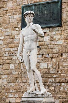 Statue de David par Michel-Ange à Florence, Italie sur Joost Adriaanse