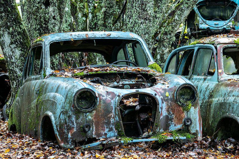 Langsam erlangt die Natur wieder Besitz von den Rohstoffen, aus denen diese Autos gebaut werden. von Gerry van Roosmalen
