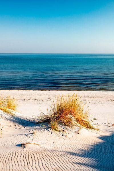 Dünen und das Meer von Sascha Kilmer