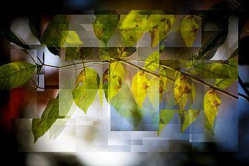 Autumn van Henk Leijen