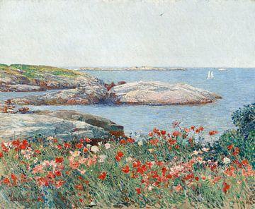 Childe Hassam, Mohnblumen, Isles of Shoals, 1891 von Atelier Liesjes