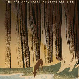 Het wilde leven: De nationale parken behouden al het leven van Vintage Afbeeldingen