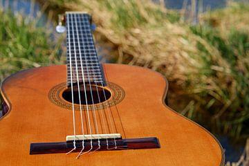 Akoustische gitaar van Natasja Tollenaar
