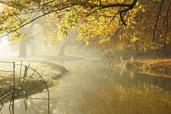 Herfst op Landgoed Elswout van Michel van Kooten