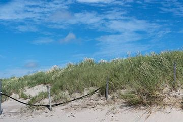 Mooie groene Hollandse duinen van Eigenwijze Fotografie