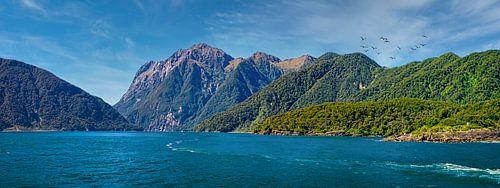 Panorama van Milford Sound, Nieuw Zeeland