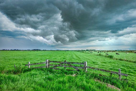 Donkere wolken boven de weilanden in de polder