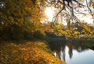 Herbstlandschaft von Markus Jerko