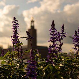 Blumen in der Stadt Stockholm von Karijn | Fine art Natuur en Reis Fotografie