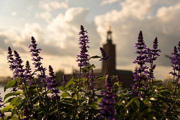 Blumen in der Stadt Stockholm von Karijn Seldam