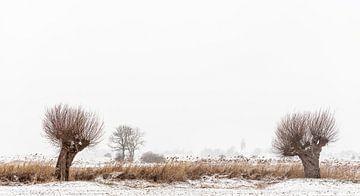 Vreugderijkerwaard in de winter von Erik Veldkamp