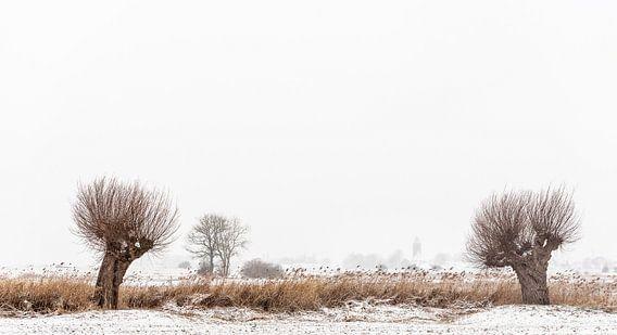 Vreugderijkerwaard in de winter