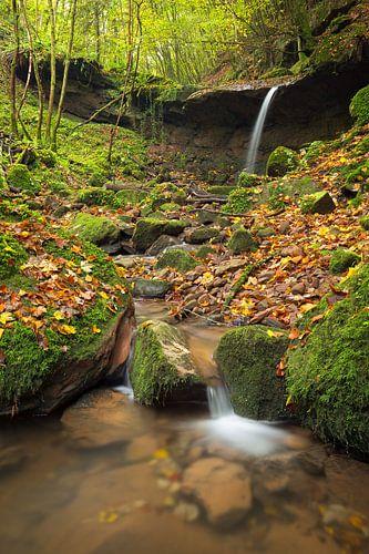 Waterval  Butzerbachtal tijdens de herfst in de Eifel, Duitsland. van
