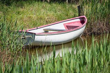 Boat and reets van Rico Ködder