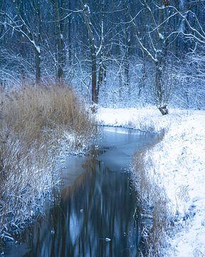 Winter in The Netherlands van Sonny Vermeer