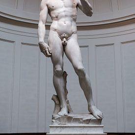 David door Michelangelo sur Erwin Blekkenhorst