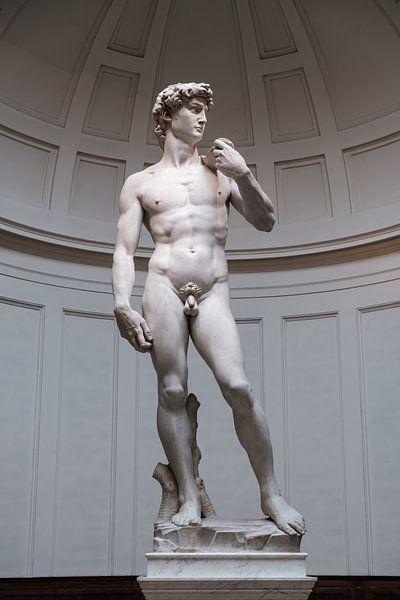 David door Michelangelo van Erwin Blekkenhorst