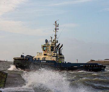 Tugboat im Hafen von IJmuiden. von scheepskijkerhavenfotografie