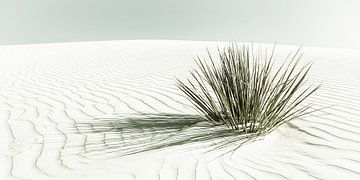 WHITE SANDS Dunes | Vintage Panorama van Melanie Viola