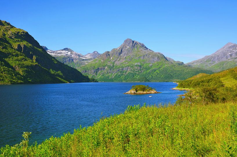 View of Innerfjorden near Møysalen van Gisela Scheffbuch