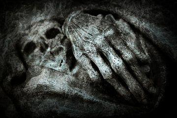 Skin & Bones von Willem Havenaar