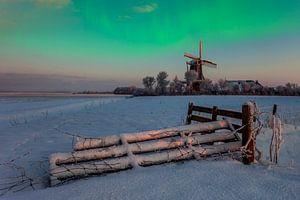 Noorderlicht Droom, Nederland