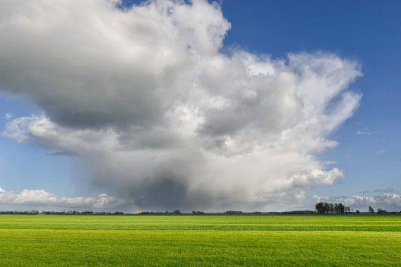 Wolkenlucht boven de weilanden