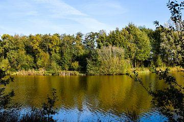 Herbstliche Reflexion. von Corine Frelink