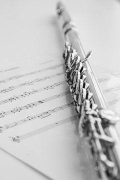 Querflöte und Noten, in schwarz-weiß von Gert Hilbink