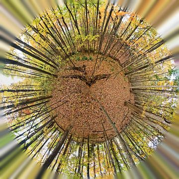 Forrest_TinyPlanet van Herman de Langen