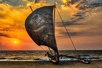 Traditionele outrigger zeilboot op het strand van Negombo Sri Lanka bij zonsondergang van Dieter Walther