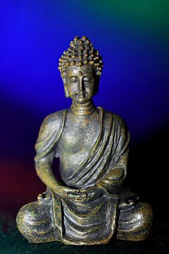 Mediterende Boeddha van Jolanta Mayerberg