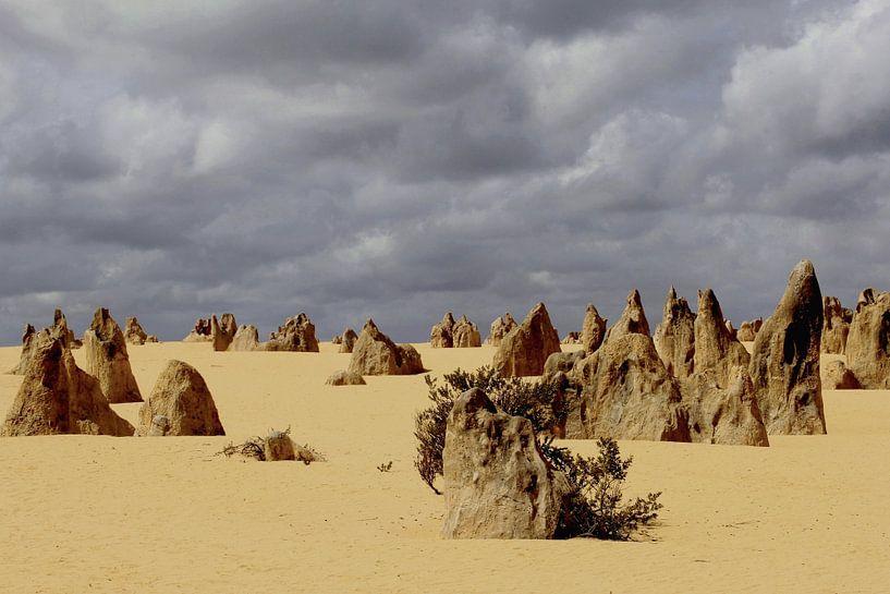 Donkere lucht boven Pinnacles desert van Inge Hogenbijl