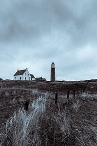 Texel 17